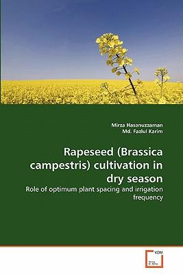 Rapeseed (Brassica campestris) cultivation in dry season