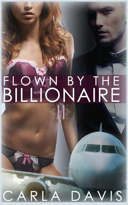 Flown by the Billionaire 2
