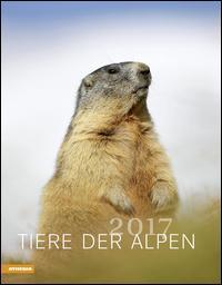 Calendario Tiere Der Alpen 2017