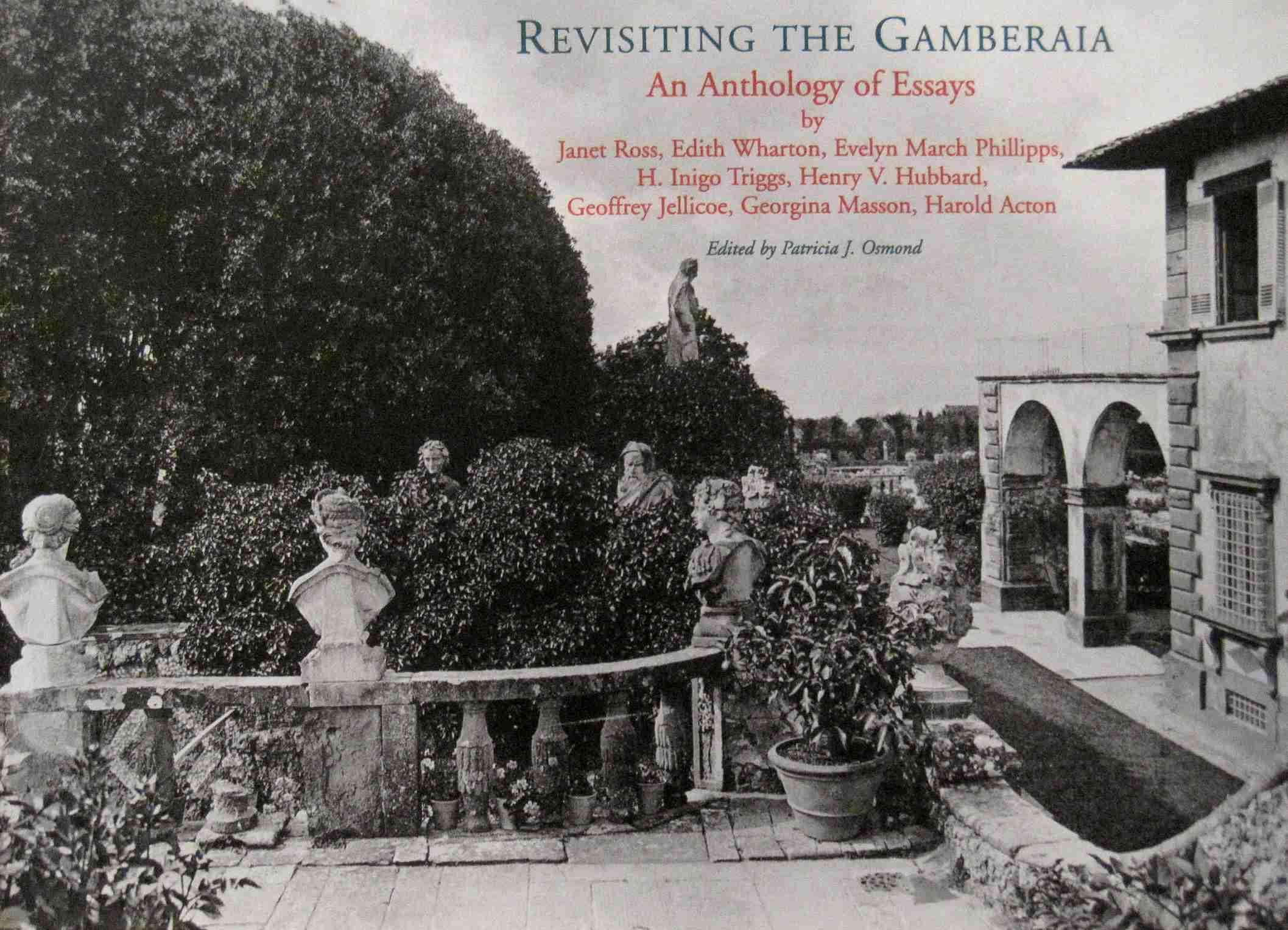 Revisiting the Gamberaia