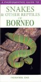 Photographic Guide to Snakes and Other Reptiles of Borneo