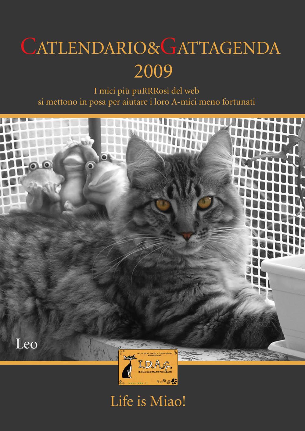 Calendario e gattagenda 2009