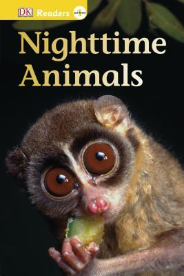 Nighttime Animals