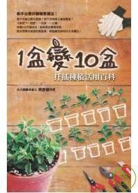 1盆變10盆扦插種植活用百科