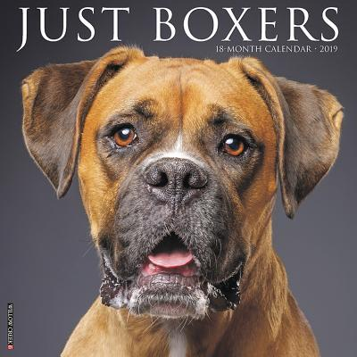 Just Boxers 2019 Cal...