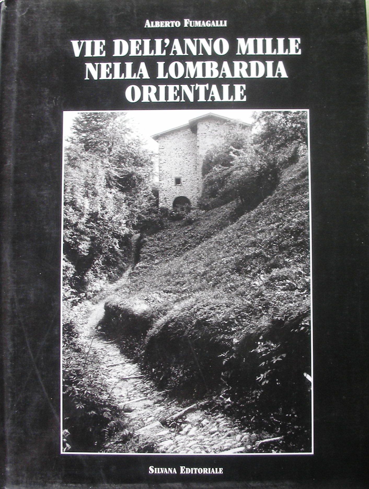 Vie dell'anno Mille nella Lombardia orientale