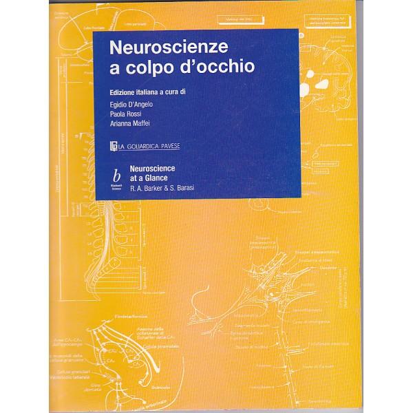 Neuroscienze a colpo d'occhio