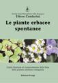 Le piante erbacee spontanee