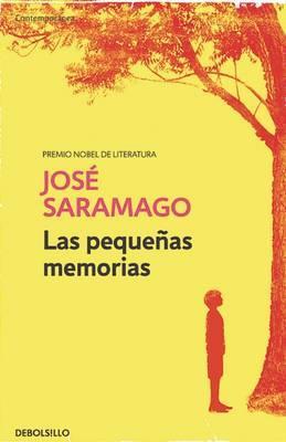 Las pequeñas memorias/ Small Memories