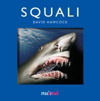 Squali. Libro pop-up