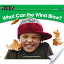 What Can the Wind Blow?