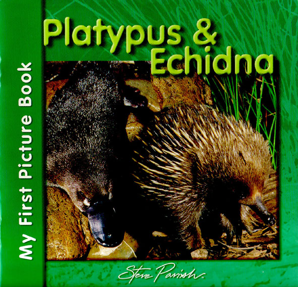 Echindna and Platypus