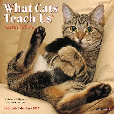 What Cats Teach Us 2...