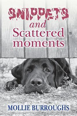 Snippets and Scattered Moments