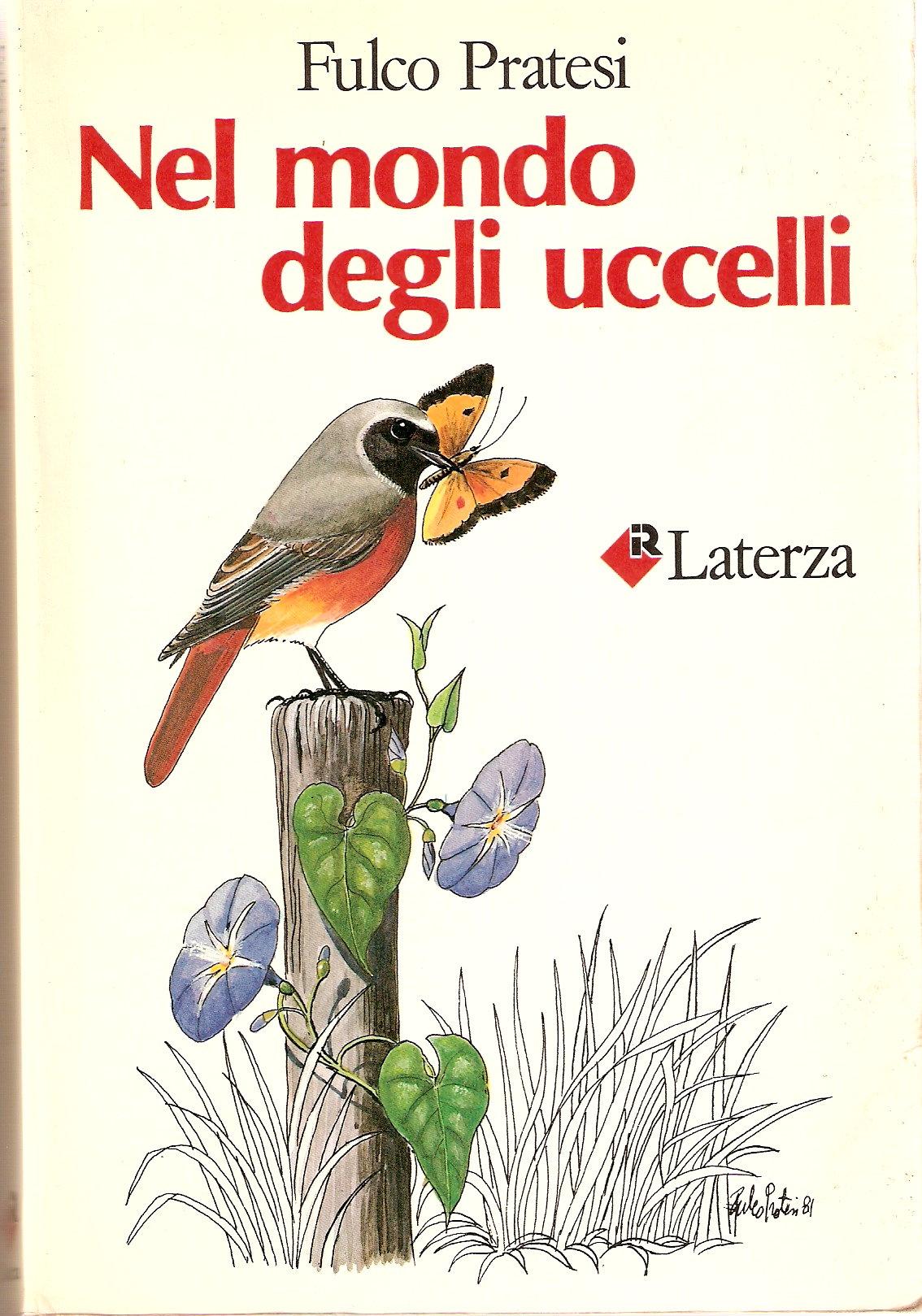 Nel mondo degli ucce...