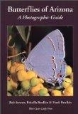 Butterflies of Arizona