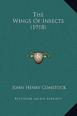 The Wings of Insects...