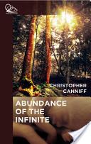 The Abundance of the Infinite