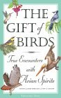 The Gift of Birds