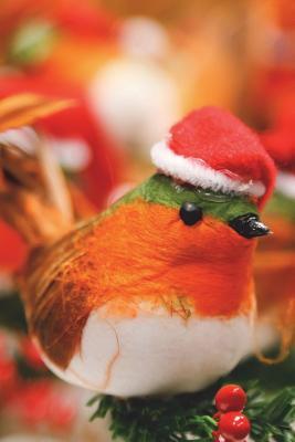 Christmas Bird Journ...