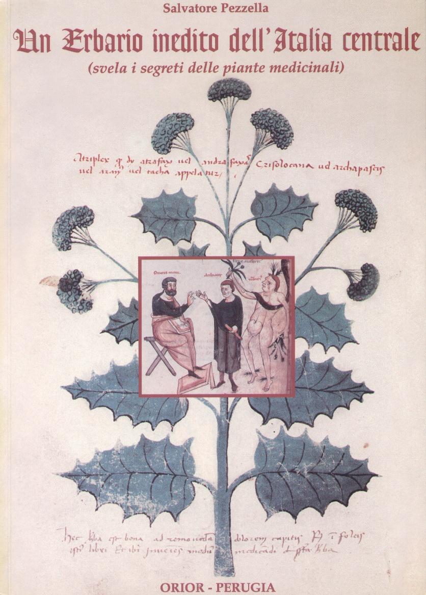 Un erbario inedito (sec. XV) dell'Italia centrale svela i segreti delle piante medicinali