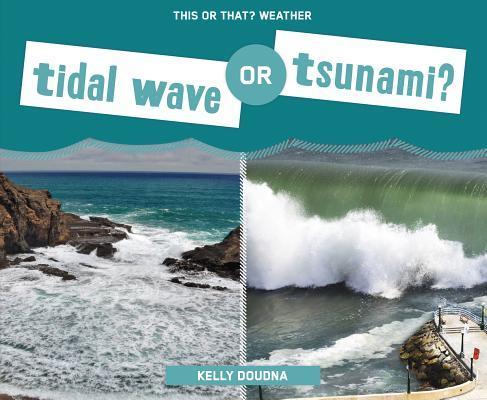 Tidal Wave or Tsunam...
