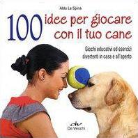 100 idee per giocare...