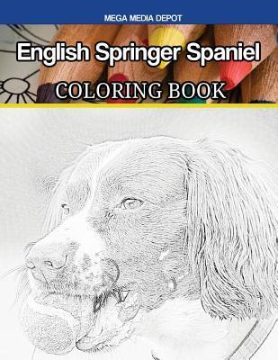 English Springer Spaniel Coloring Book