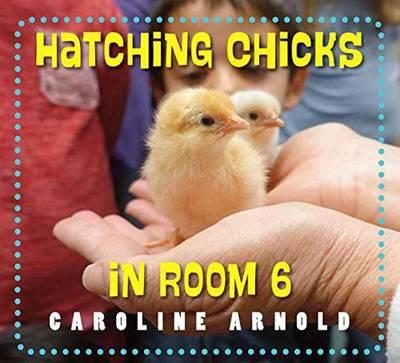 Hatching Chicks in R...