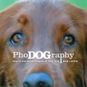 PhoDOGraphy