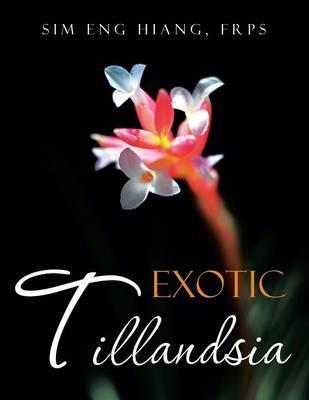 Exotic Tillandsia