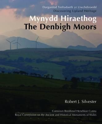 Mynydd Hiraethog - The Denbigh Moors (Discovering Upland Heritage)