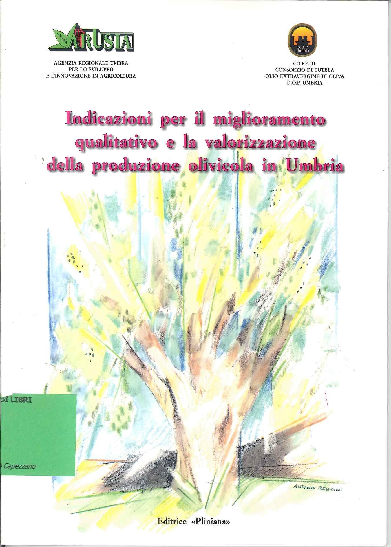 Indicazioni per il miglioramento qualitativo e la valorizzazione della produzione olivicola in Umbria