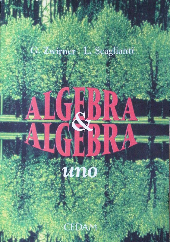 Algebra & algebra