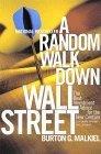 A Random Walk Down Wall Street Seventh Edition
