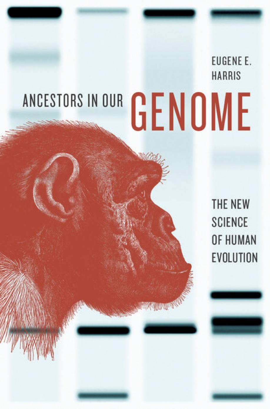 Ancestors in Our Genome