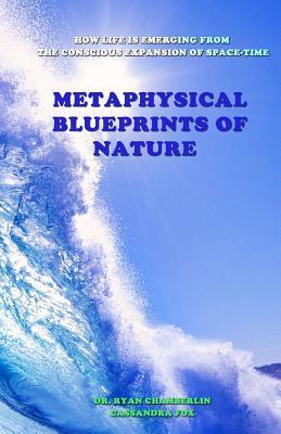 Metaphysical Blueprints of Nature