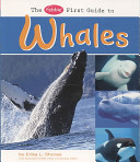 The Pebble First Guide to Whales