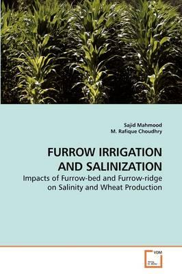 Furrow Irrigation and Salinization