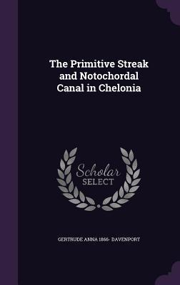 The Primitive Streak and Notochordal Canal in Chelonia