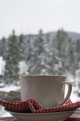 A Cup of Tea and a Mountain View Journal