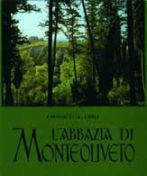 L'abbazia di Monteol...