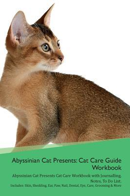 Abyssinian Cat Presents