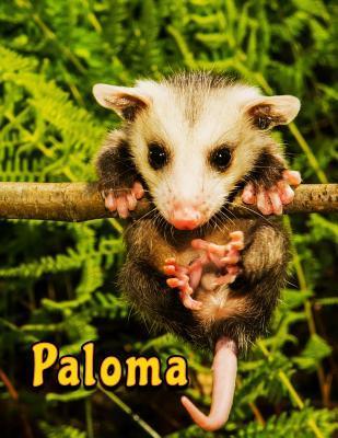 Paloma Notebook