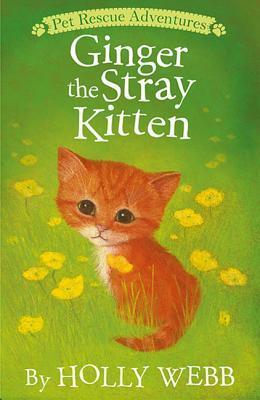 Ginger the Stray Kit...