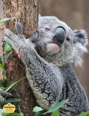 WriteDrawDesign Notebook, Blank Unlined, 8.5 x 11 Inches, Koala Bear In A Tree