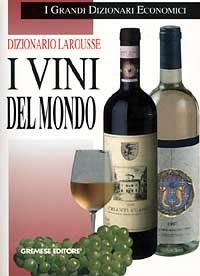 Dizionario Larousse