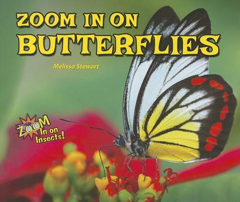 Zoom in on Butterfli...