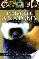 Primate Anatomy