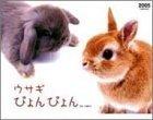ウサギぴょんぴょん 2005年 カレンダー